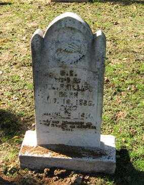 PHILLIPS, SARAH ELIZABETH - Lawrence County, Arkansas | SARAH ELIZABETH PHILLIPS - Arkansas Gravestone Photos