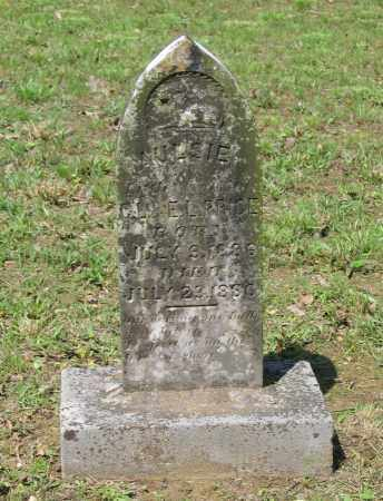 PRICE, AULSIE - Lawrence County, Arkansas | AULSIE PRICE - Arkansas Gravestone Photos