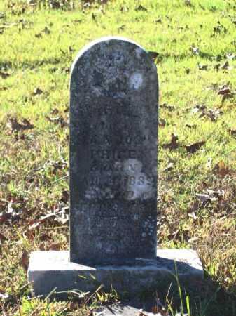 PRICE, VIRGIE - Lawrence County, Arkansas | VIRGIE PRICE - Arkansas Gravestone Photos