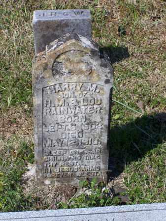 RAINWATER, HARRY M. - Lawrence County, Arkansas | HARRY M. RAINWATER - Arkansas Gravestone Photos