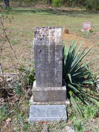 RAINWATER, NANCY W. A. - Lawrence County, Arkansas | NANCY W. A. RAINWATER - Arkansas Gravestone Photos