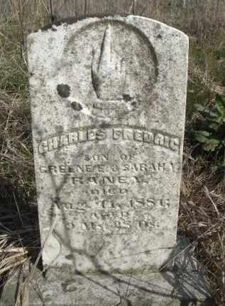 RANEY, CHARLES FREDRIC - Lawrence County, Arkansas   CHARLES FREDRIC RANEY - Arkansas Gravestone Photos