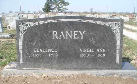 PRICE RANEY, VIRGIE ANN - Lawrence County, Arkansas | VIRGIE ANN PRICE RANEY - Arkansas Gravestone Photos