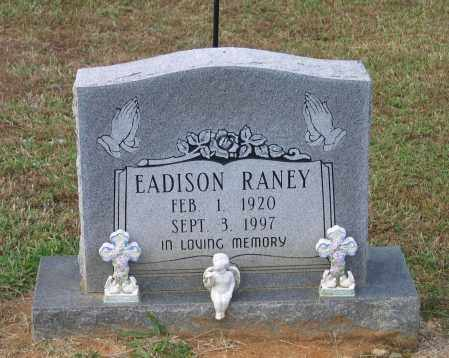 RANEY, EADISON - Lawrence County, Arkansas | EADISON RANEY - Arkansas Gravestone Photos