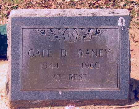 RANEY, GALE DEE - Lawrence County, Arkansas | GALE DEE RANEY - Arkansas Gravestone Photos