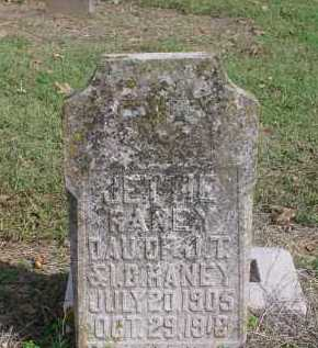 RANEY, JETTIE - Lawrence County, Arkansas | JETTIE RANEY - Arkansas Gravestone Photos