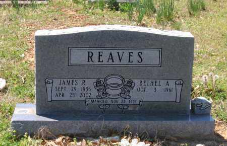 "REAVES, JAMES R. ""RICKY"" - Lawrence County, Arkansas 