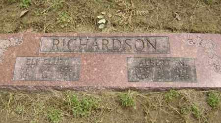RICHARDSON, ALBERT NEWTON - Lawrence County, Arkansas | ALBERT NEWTON RICHARDSON - Arkansas Gravestone Photos