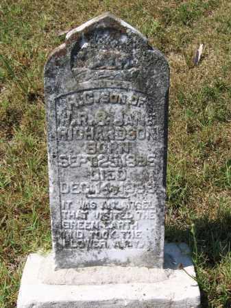 "RICHARDSON, HORATIO C. ""H. C."" - Lawrence County, Arkansas | HORATIO C. ""H. C."" RICHARDSON - Arkansas Gravestone Photos"
