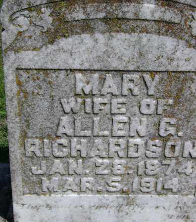 RICHARDSON, MARY - Lawrence County, Arkansas | MARY RICHARDSON - Arkansas Gravestone Photos