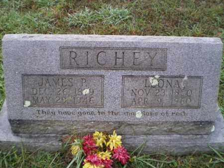 RICHEY, JAMES PARK - Lawrence County, Arkansas | JAMES PARK RICHEY - Arkansas Gravestone Photos