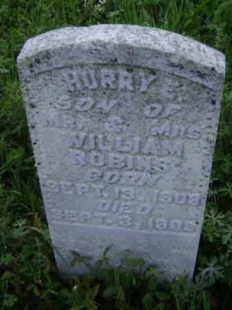 ROBINS, HURRY E. - Lawrence County, Arkansas | HURRY E. ROBINS - Arkansas Gravestone Photos