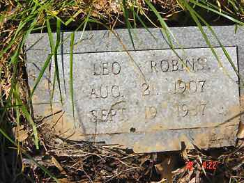 ROBINS, LEO C. - Lawrence County, Arkansas | LEO C. ROBINS - Arkansas Gravestone Photos