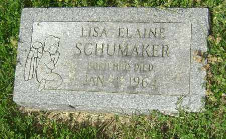 SCHUMAKER, LISA ELAINE - Lawrence County, Arkansas | LISA ELAINE SCHUMAKER - Arkansas Gravestone Photos