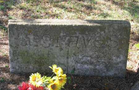 ALEXANDER SEGRAVES, SUSAN ALICE - Lawrence County, Arkansas | SUSAN ALICE ALEXANDER SEGRAVES - Arkansas Gravestone Photos
