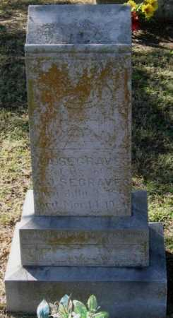 FORTENBERRY SEGRAVES, MARTHA ANN - Lawrence County, Arkansas | MARTHA ANN FORTENBERRY SEGRAVES - Arkansas Gravestone Photos
