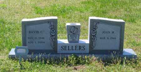 SELLERS, SR., DAVID CARL - Lawrence County, Arkansas | DAVID CARL SELLERS, SR. - Arkansas Gravestone Photos