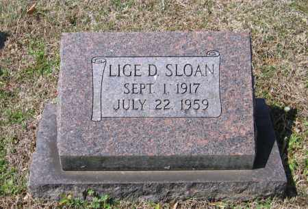SLOAN, LIGE D. - Lawrence County, Arkansas | LIGE D. SLOAN - Arkansas Gravestone Photos