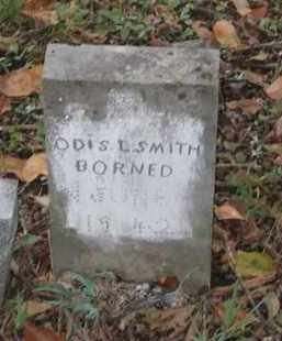 SMITH, ODIS L. - Lawrence County, Arkansas | ODIS L. SMITH - Arkansas Gravestone Photos
