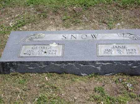HOGAN SNOW, JANIE - Lawrence County, Arkansas | JANIE HOGAN SNOW - Arkansas Gravestone Photos