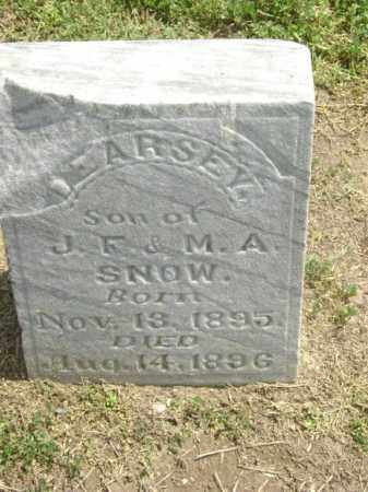 SNOW, LEARSEY - Lawrence County, Arkansas | LEARSEY SNOW - Arkansas Gravestone Photos