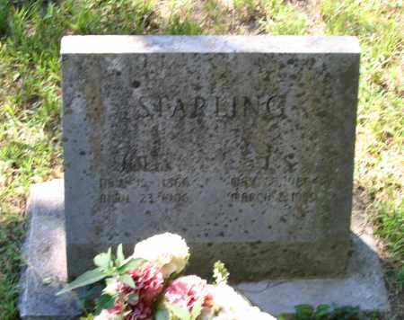 PARK STARLING, JULIA S. - Lawrence County, Arkansas | JULIA S. PARK STARLING - Arkansas Gravestone Photos