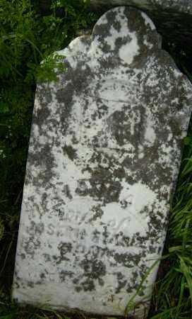 STARNES, AMANDA - Lawrence County, Arkansas   AMANDA STARNES - Arkansas Gravestone Photos