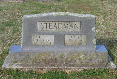 STEADMAN, MARY - Lawrence County, Arkansas | MARY STEADMAN - Arkansas Gravestone Photos