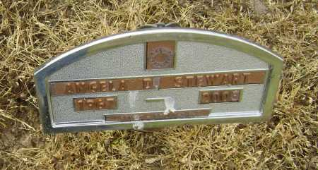 SATERFIEL STEWART, ANGELA DAWN - Lawrence County, Arkansas | ANGELA DAWN SATERFIEL STEWART - Arkansas Gravestone Photos