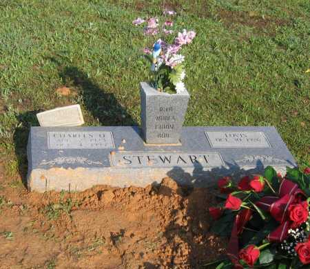 STEWART, LOVIS BEATRICE - Lawrence County, Arkansas | LOVIS BEATRICE STEWART - Arkansas Gravestone Photos