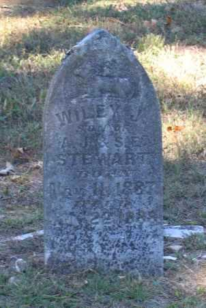 STEWART, WILEY J. - Lawrence County, Arkansas | WILEY J. STEWART - Arkansas Gravestone Photos