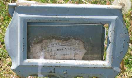 STRANGE, CHARLES WAYNE - Lawrence County, Arkansas | CHARLES WAYNE STRANGE - Arkansas Gravestone Photos