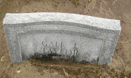 TAYLOR, GALE E. - Lawrence County, Arkansas | GALE E. TAYLOR - Arkansas Gravestone Photos