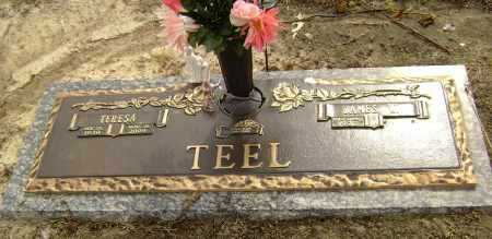 HISE TEEL, TERESA ROSE - Lawrence County, Arkansas | TERESA ROSE HISE TEEL - Arkansas Gravestone Photos