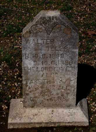 TOLES, WALTER - Lawrence County, Arkansas | WALTER TOLES - Arkansas Gravestone Photos