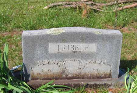 TRIBBLE, CLAY LEE - Lawrence County, Arkansas | CLAY LEE TRIBBLE - Arkansas Gravestone Photos
