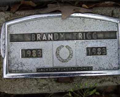 TRIGG, BRANDY - Lawrence County, Arkansas | BRANDY TRIGG - Arkansas Gravestone Photos