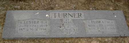 TURNER, LESTER E. - Lawrence County, Arkansas | LESTER E. TURNER - Arkansas Gravestone Photos