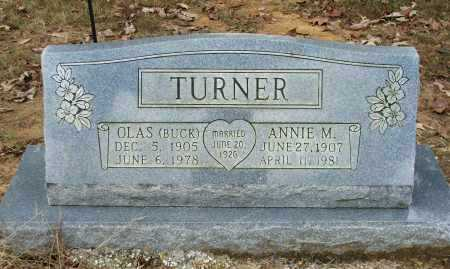 "TURNER, OLAS ""BUCK"" - Lawrence County, Arkansas 