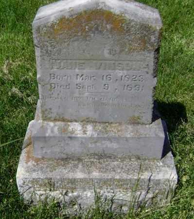 VINSON, JANE - Lawrence County, Arkansas | JANE VINSON - Arkansas Gravestone Photos