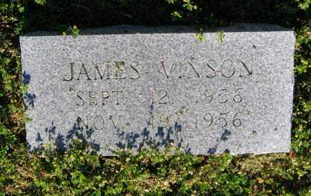 VINSON, JAMES - Lawrence County, Arkansas | JAMES VINSON - Arkansas Gravestone Photos
