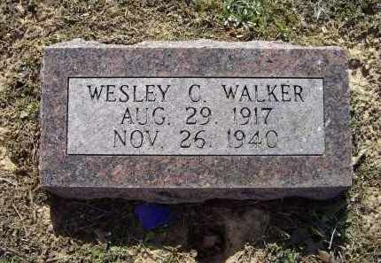 WALKER, WESLEY C. - Lawrence County, Arkansas | WESLEY C. WALKER - Arkansas Gravestone Photos