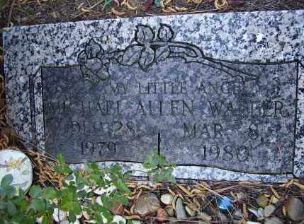 WALLER, MICHAEL ALLEN - Lawrence County, Arkansas | MICHAEL ALLEN WALLER - Arkansas Gravestone Photos