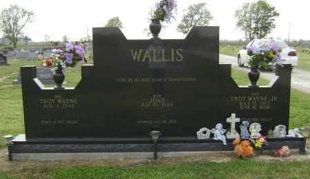 WALLIS JR, TROY WAYNE - Lawrence County, Arkansas | TROY WAYNE WALLIS JR - Arkansas Gravestone Photos