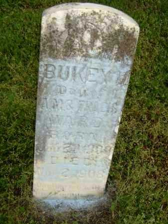 WARD, BUKEY V. - Lawrence County, Arkansas | BUKEY V. WARD - Arkansas Gravestone Photos