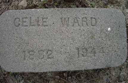 WARD, CELIE - Lawrence County, Arkansas | CELIE WARD - Arkansas Gravestone Photos