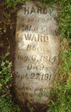 WARD, HARDY - Lawrence County, Arkansas | HARDY WARD - Arkansas Gravestone Photos