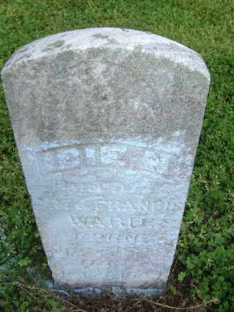 WARD, IBIE N. - Lawrence County, Arkansas | IBIE N. WARD - Arkansas Gravestone Photos