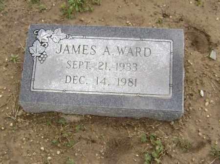 WARD, JAMES ALBERT - Lawrence County, Arkansas | JAMES ALBERT WARD - Arkansas Gravestone Photos