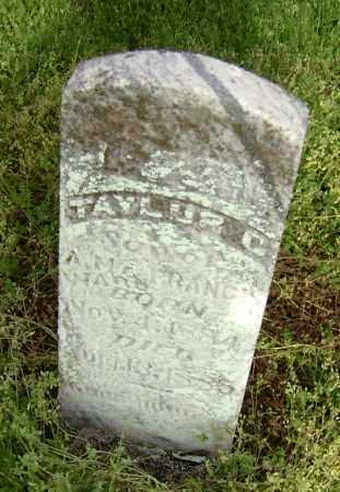 WARD, TAYLOR C. - Lawrence County, Arkansas | TAYLOR C. WARD - Arkansas Gravestone Photos